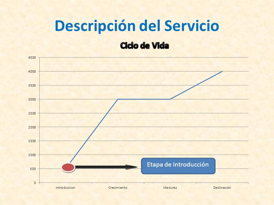 Descripción del Servicio