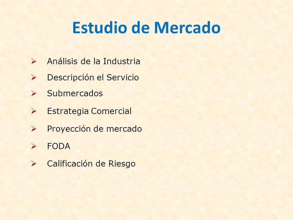Estudio de Mercado Análisis de la Industria Descripción el Servicio