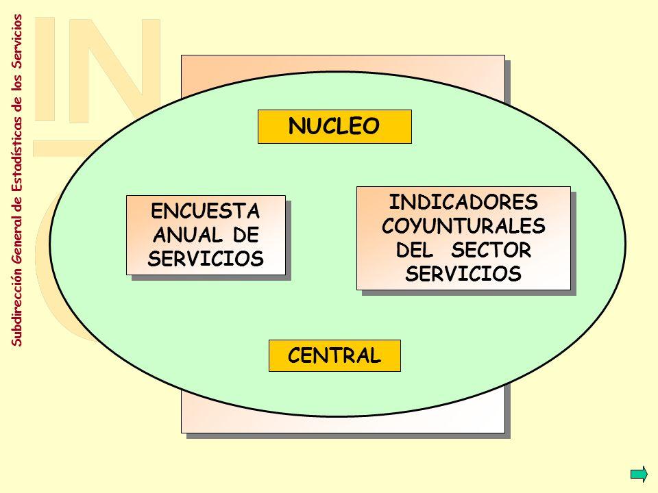 NUCLEO INDICADORES COYUNTURALES DEL SECTOR SERVICIOS