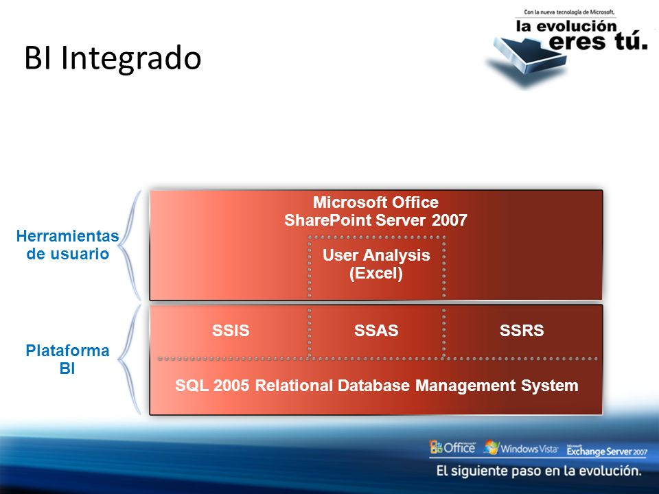 BI Integrado Microsoft Office SharePoint Server 2007