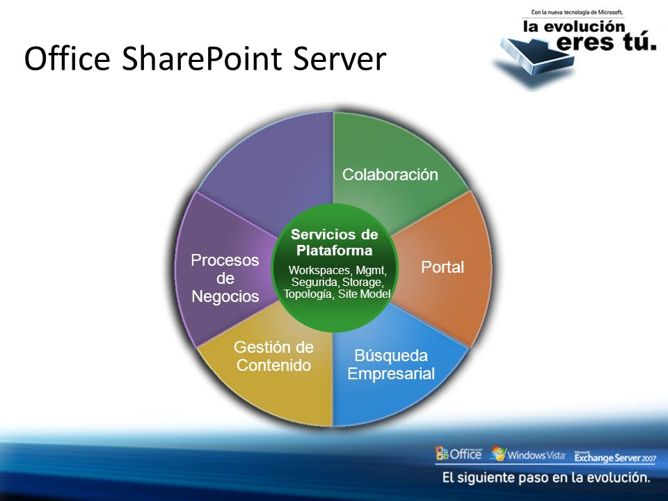Office SharePoint Server
