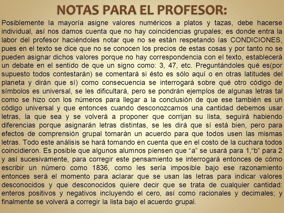 NOTAS PARA EL PROFESOR: