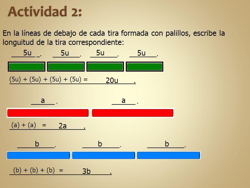 Actividad 2: En la líneas de debajo de cada tira formada con palillos, escribe la longuitud de la tira correspondiente: