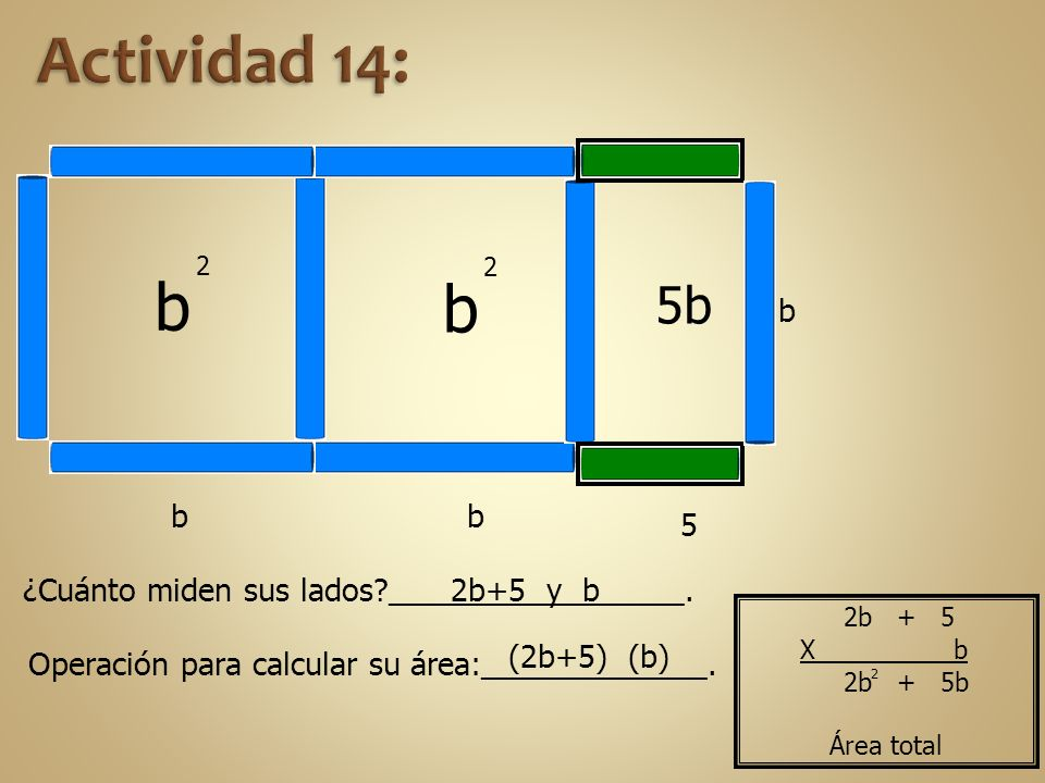 Actividad 14: b. 2. b. 2. 5b. b. b. b. 5. ¿Cuánto miden sus lados _________________. 2b+5 y b.