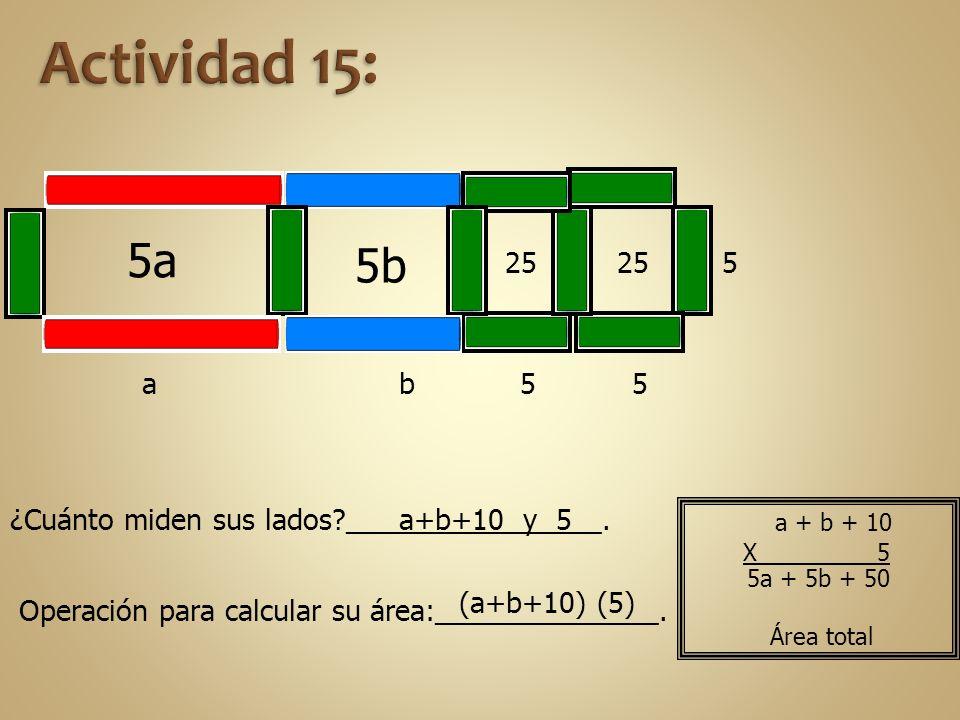 Actividad 15: 5a. 5b. 25. 25. 5. a. b. 5. 5. ¿Cuánto miden sus lados ________________. a+b+10 y 5.