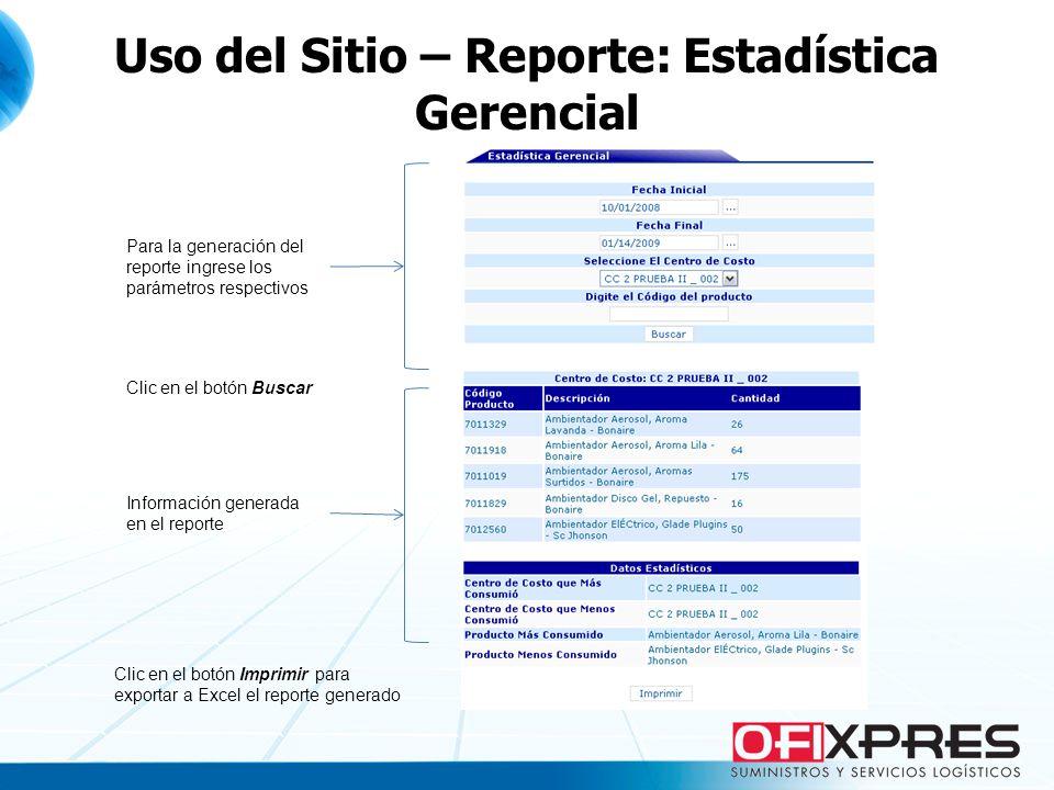 Uso del Sitio – Reporte: Estadística Gerencial