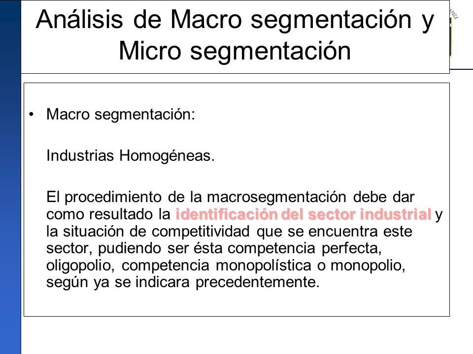 Análisis de Macro segmentación y Micro segmentación