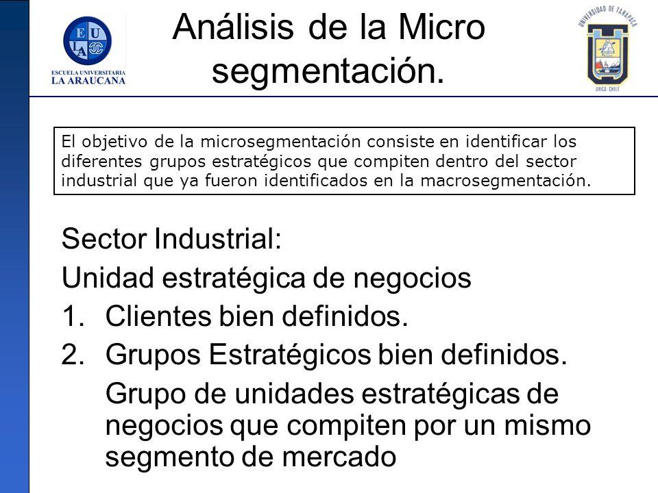 Análisis de la Micro segmentación.