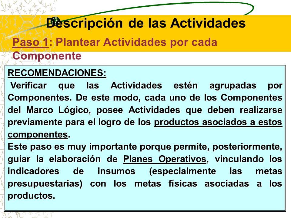Descripción de las Actividades