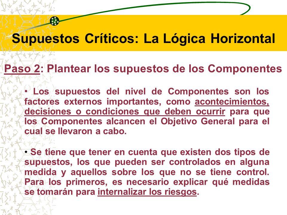 Supuestos Críticos: La Lógica Horizontal