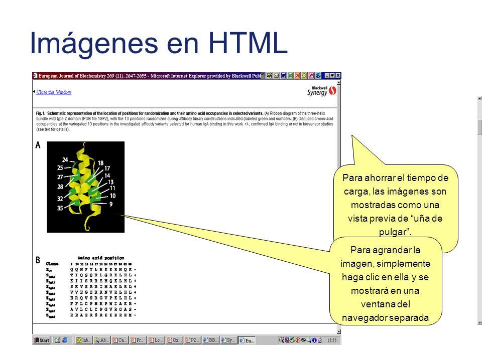 Imágenes en HTML Para ahorrar el tiempo de carga, las imágenes son mostradas como una vista previa de uña de pulgar .