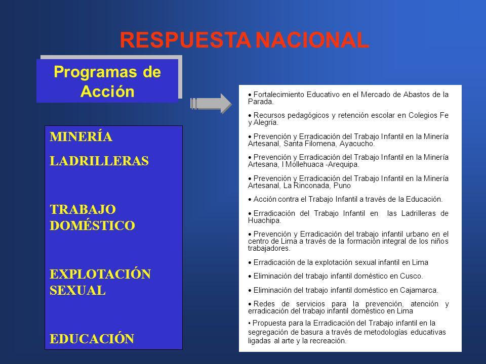 RESPUESTA NACIONAL Programas de Acción MINERÍA LADRILLERAS