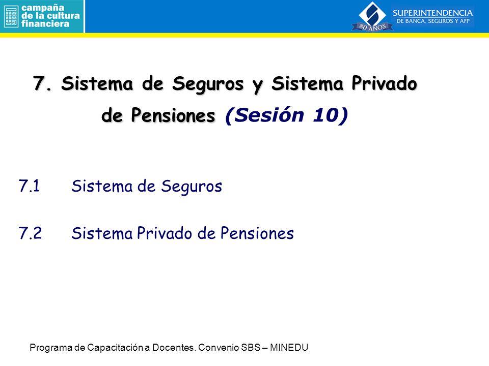 7. Sistema de Seguros y Sistema Privado de Pensiones (Sesión 10)