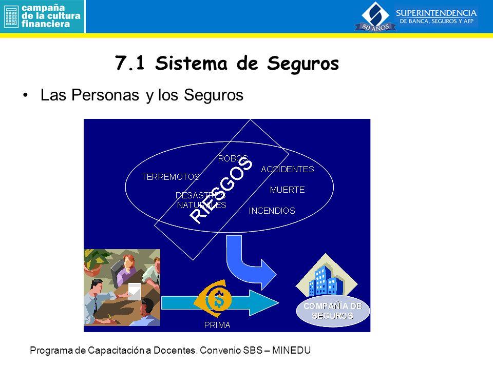 7.1 Sistema de Seguros Las Personas y los Seguros