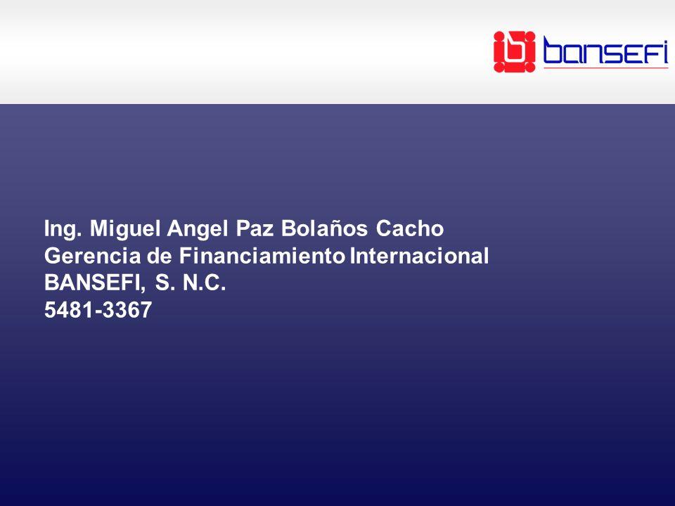 Ing. Miguel Angel Paz Bolaños Cacho Gerencia de Financiamiento Internacional BANSEFI, S.
