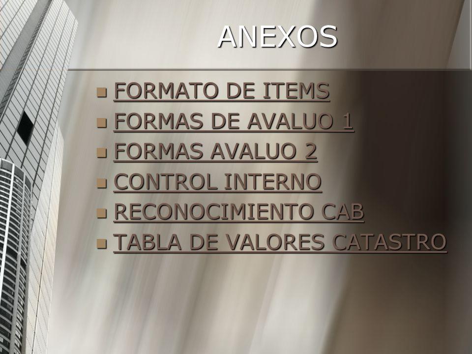 ANEXOS FORMATO DE ITEMS FORMAS DE AVALUO 1 FORMAS AVALUO 2