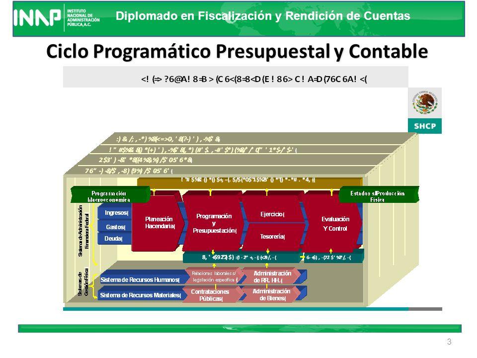 Ciclo Programático Presupuestal y Contable