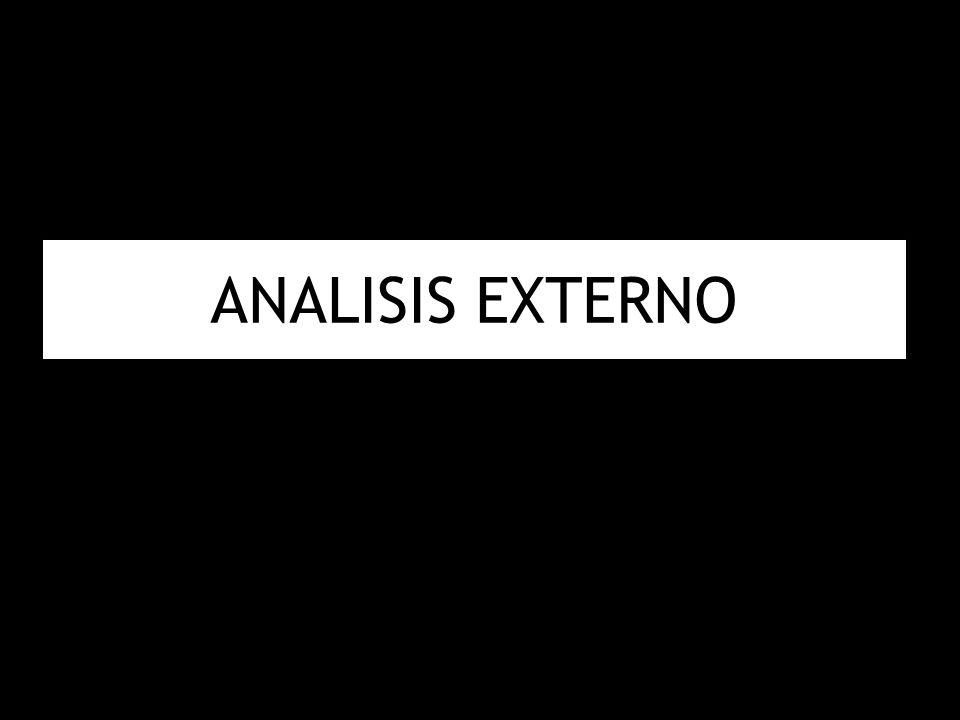 ANALISIS EXTERNO 25