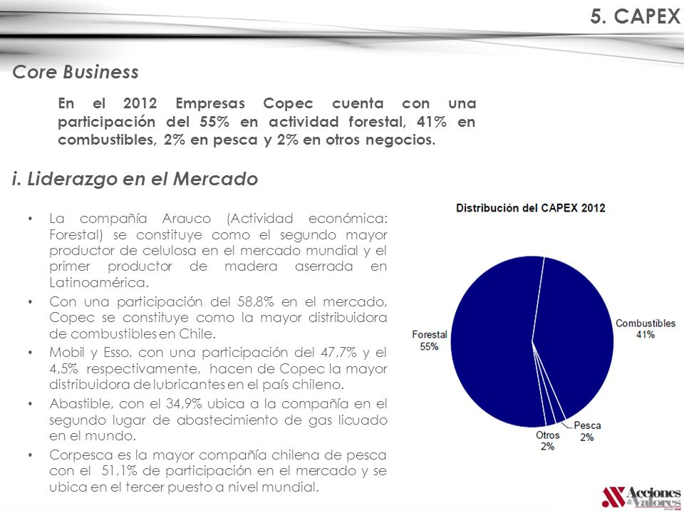 5. CAPEX Core Business i. Liderazgo en el Mercado