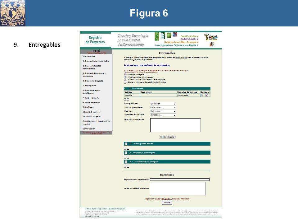 Figura 6 Entregables