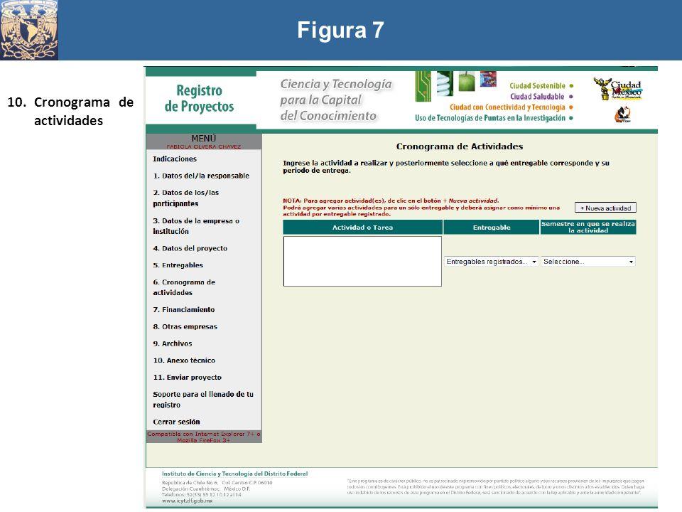 Figura 7 Cronograma de actividades
