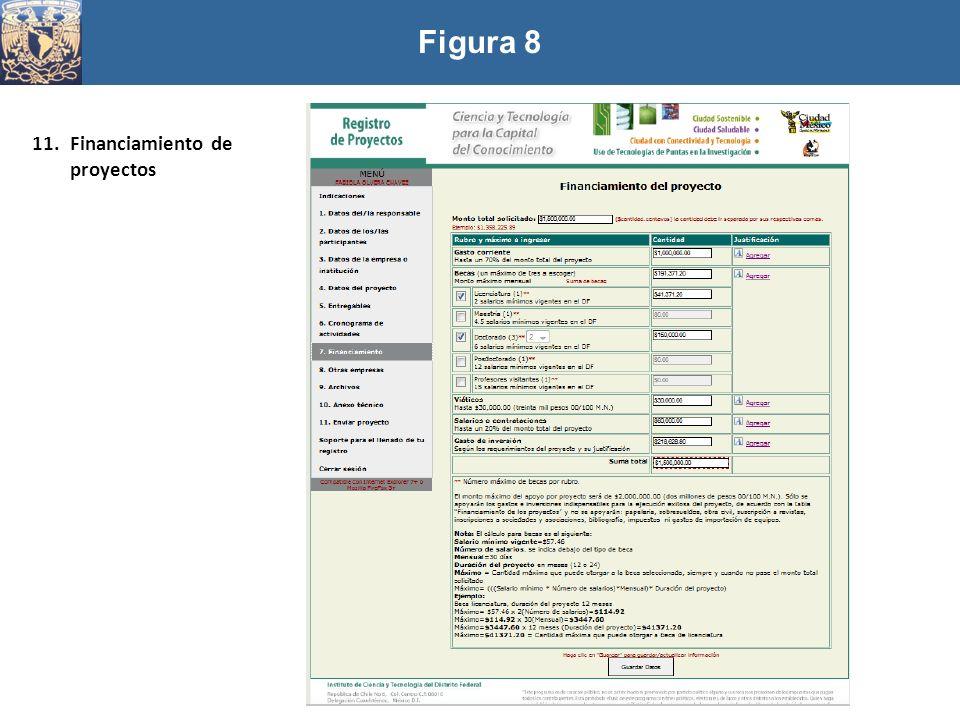 Figura 8 Financiamiento de proyectos