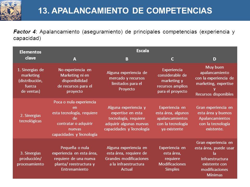 13. APALANCAMIENTO DE COMPETENCIAS