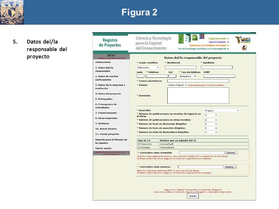 Figura 2 Datos del/la responsable del proyecto