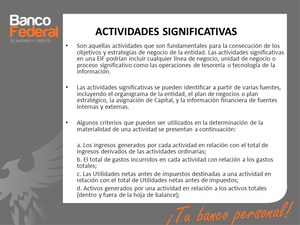 ACTIVIDADES SIGNIFICATIVAS