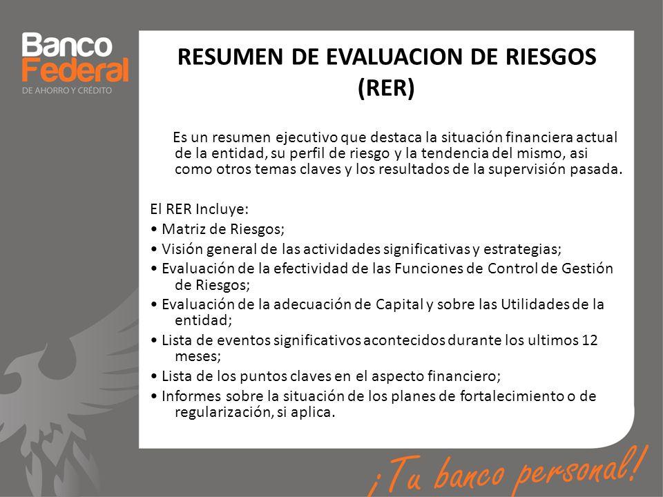 RESUMEN DE EVALUACION DE RIESGOS (RER)
