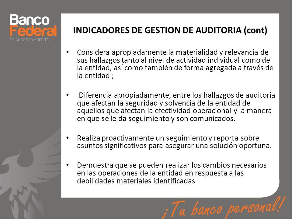INDICADORES DE GESTION DE AUDITORIA (cont)
