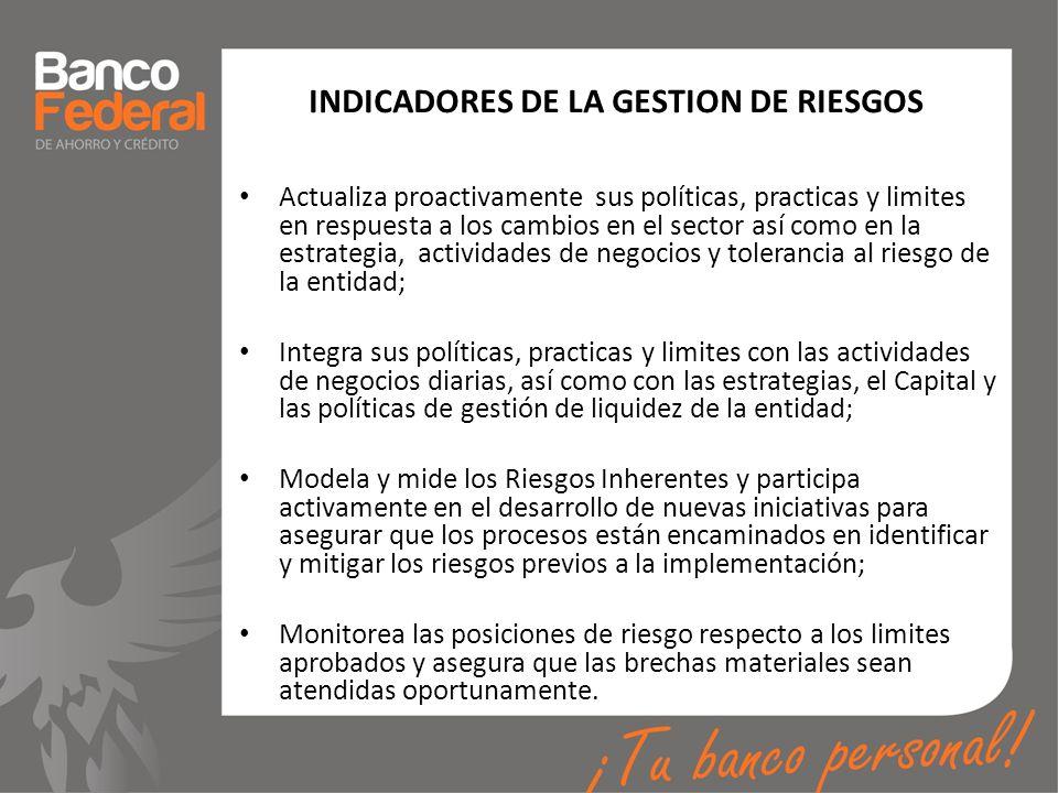 INDICADORES DE LA GESTION DE RIESGOS