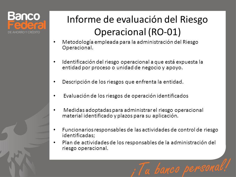 Informe de evaluación del Riesgo Operacional (RO-01)