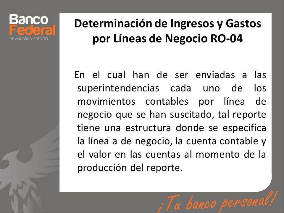 Determinación de Ingresos y Gastos por Líneas de Negocio RO-04