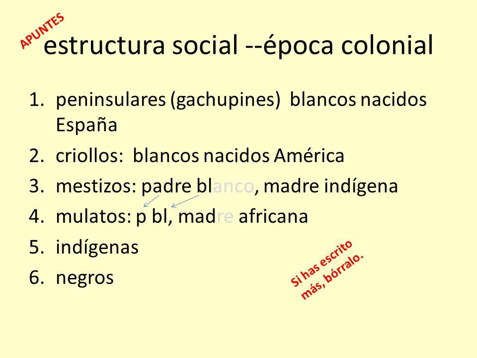 estructura social --época colonial