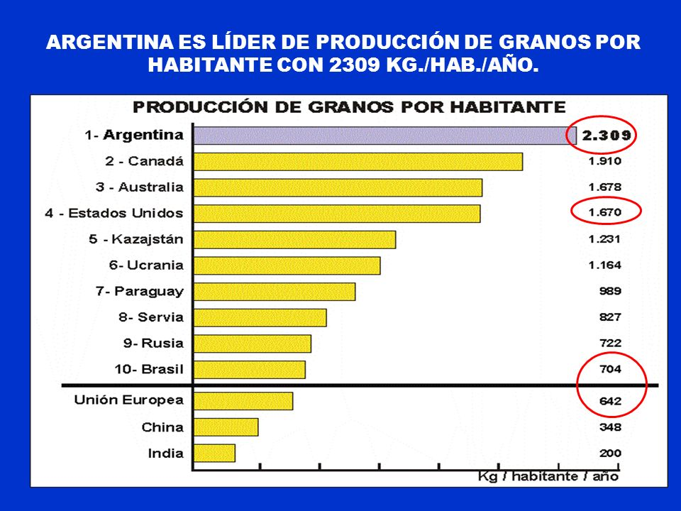 Argentina es líder de producción de granos por habitante con 2309 Kg