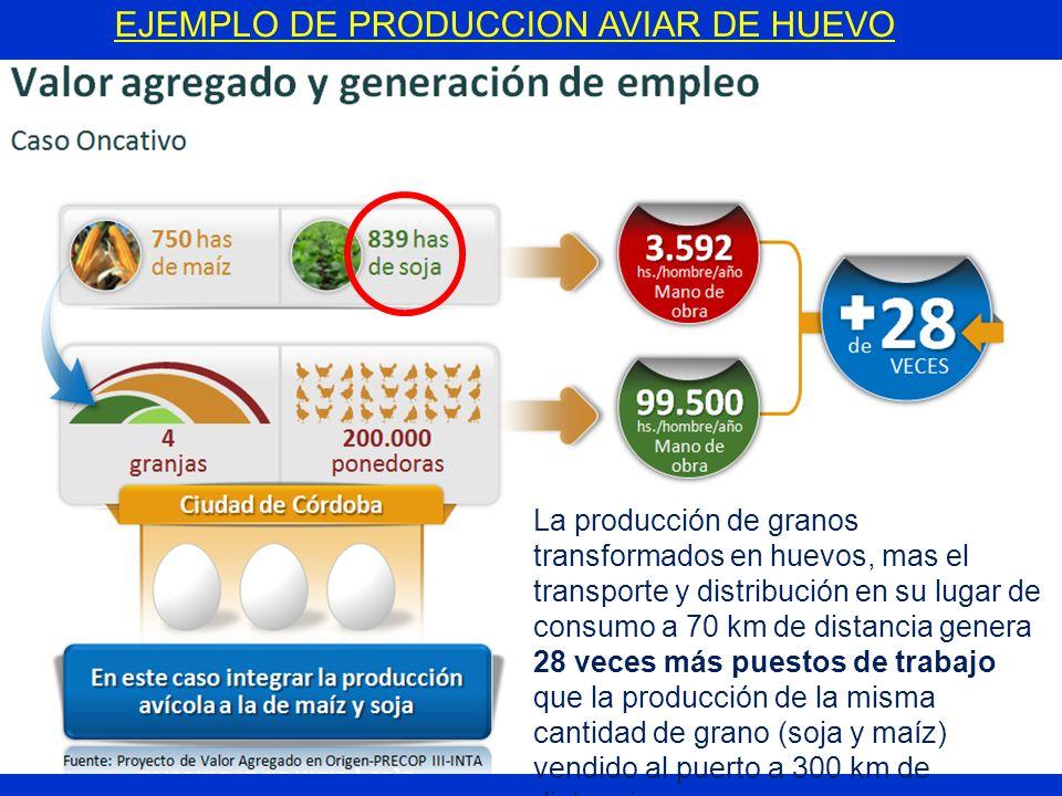 EJEMPLO DE PRODUCCION AVIAR DE HUEVO