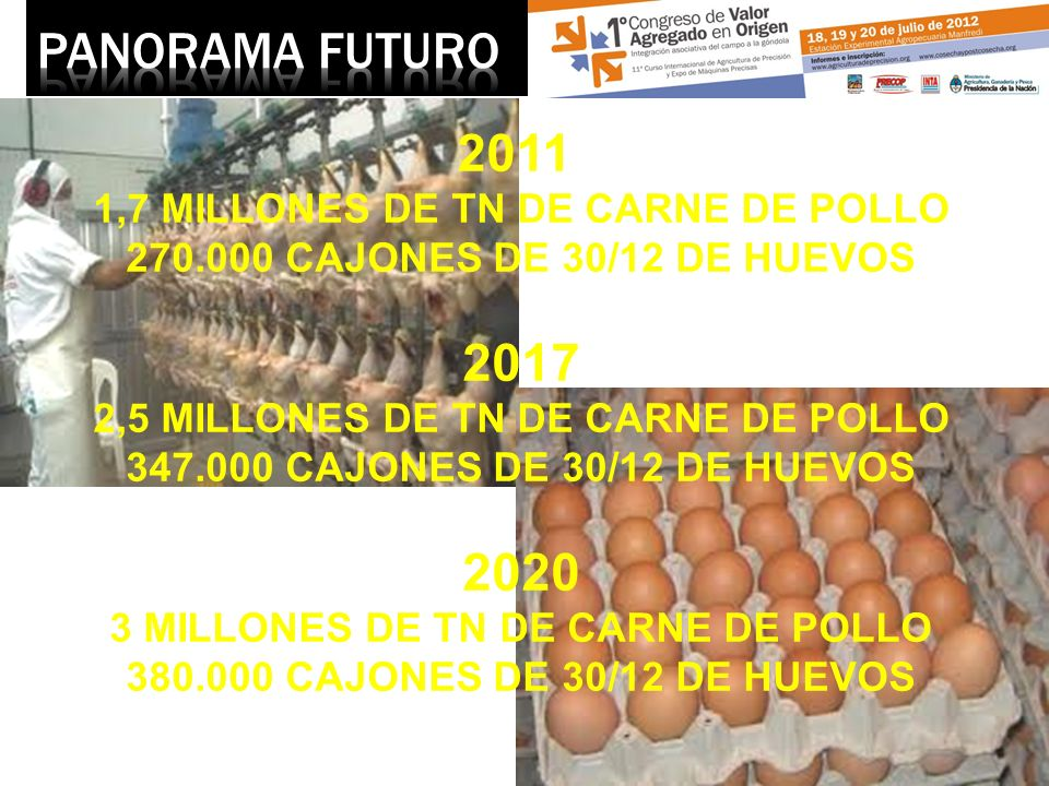 PANORAMA FUTURO 2011 2017 2020 1,7 MILLONES DE TN DE CARNE DE POLLO