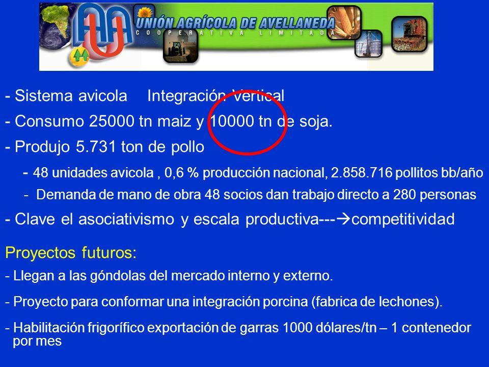 - Sistema avicola Integración Vertical