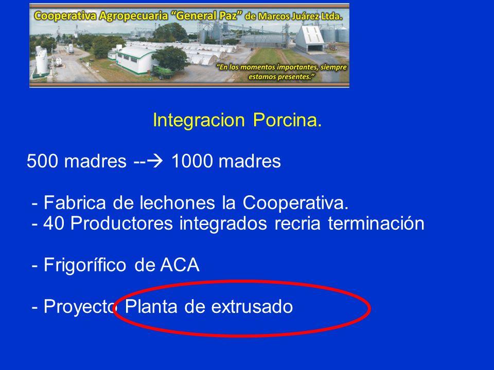 Integracion Porcina. 500 madres -- 1000 madres. - Fabrica de lechones la Cooperativa. - 40 Productores integrados recria terminación.