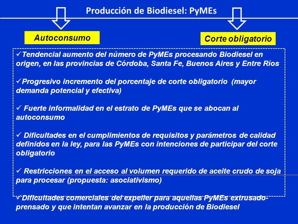 Producción de Biodiesel: PyMEs
