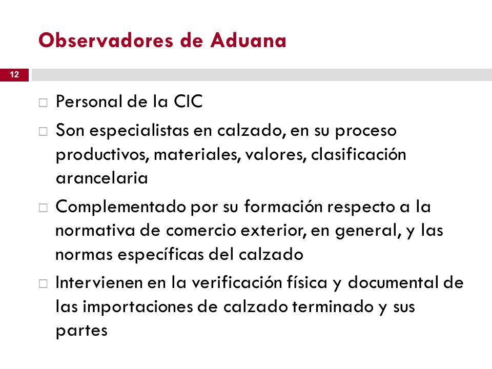 Observadores de Aduana