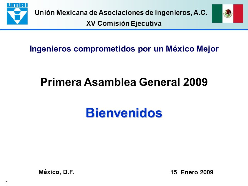 Primera Asamblea General 2009
