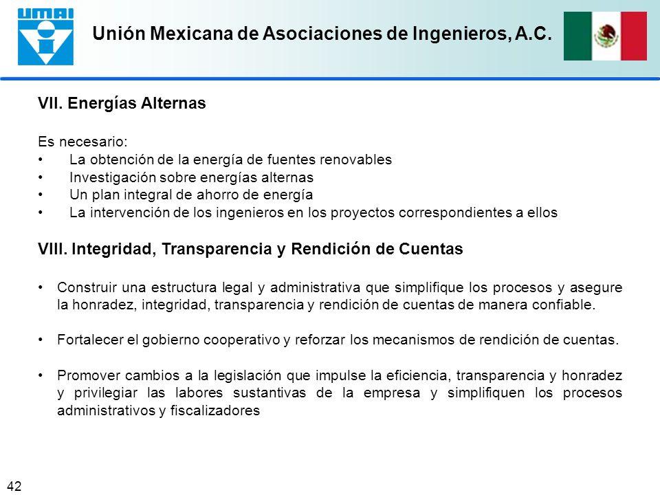VIII. Integridad, Transparencia y Rendición de Cuentas