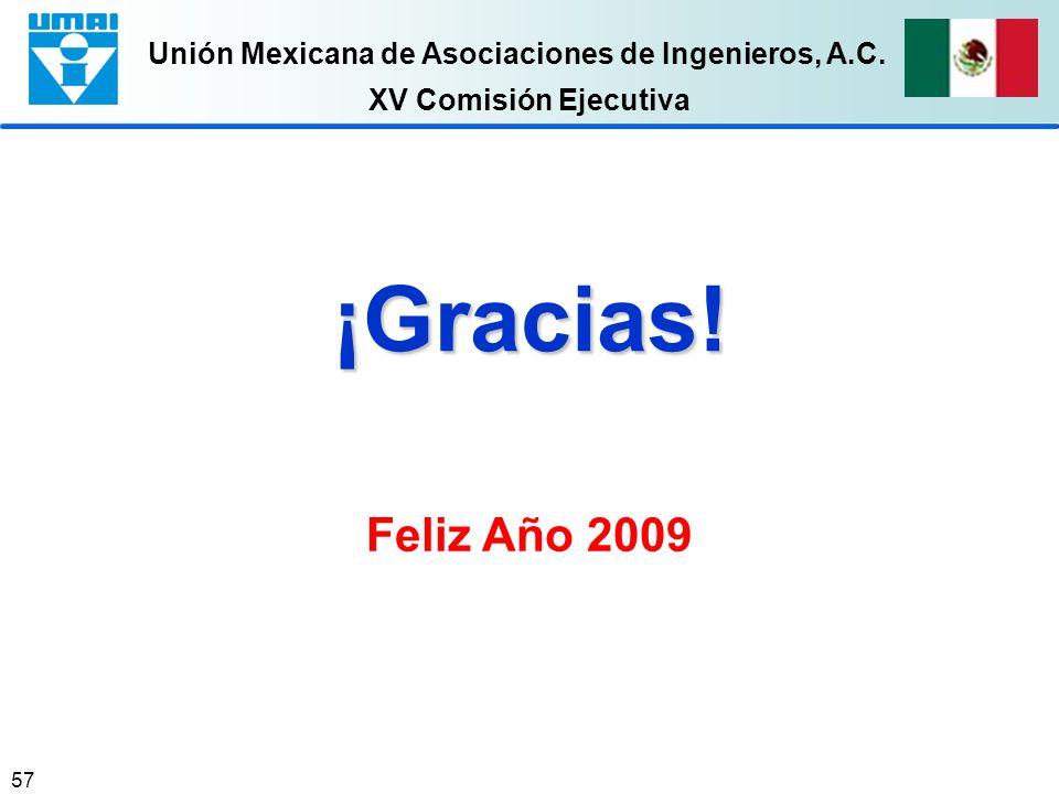 XV Comisión Ejecutiva ¡Gracias! Feliz Año 2009