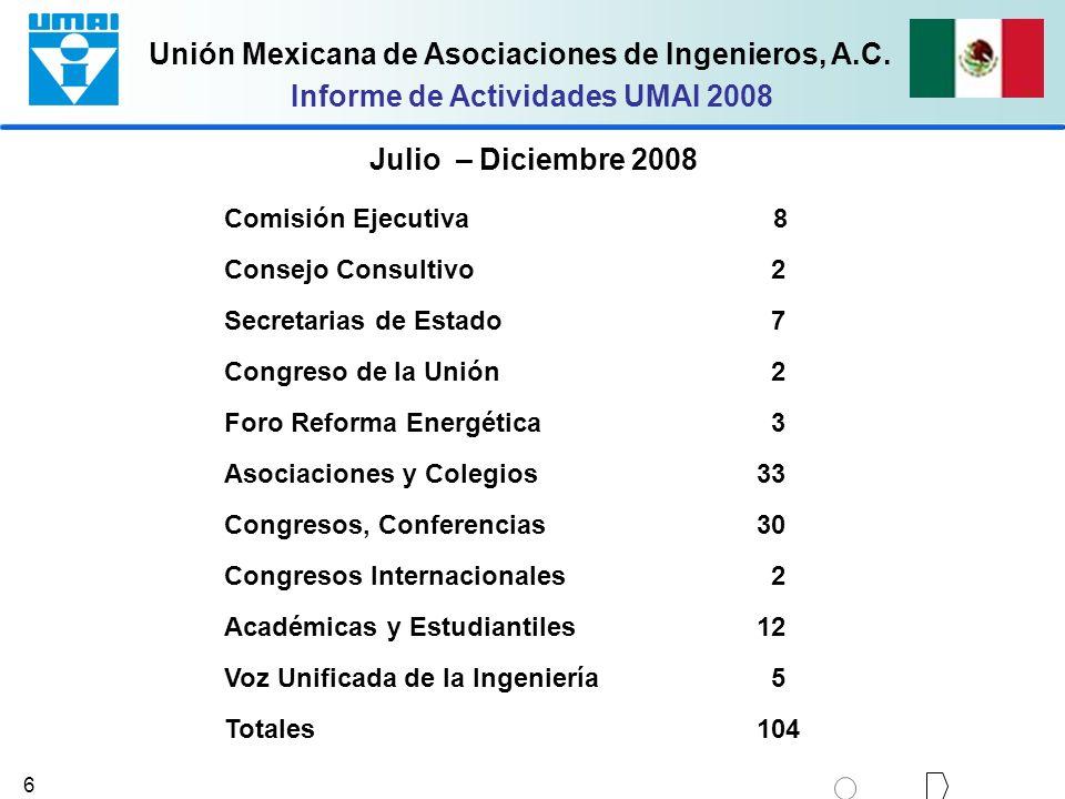 Informe de Actividades UMAI 2008