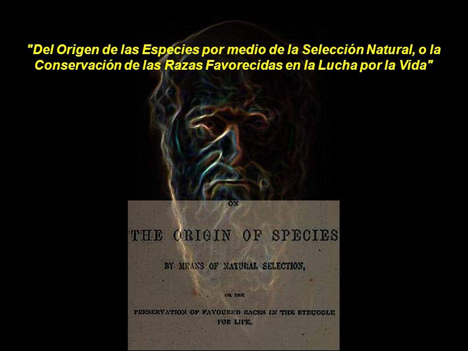 Del Origen de las Especies por medio de la Selección Natural, o la Conservación de las Razas Favorecidas en la Lucha por la Vida