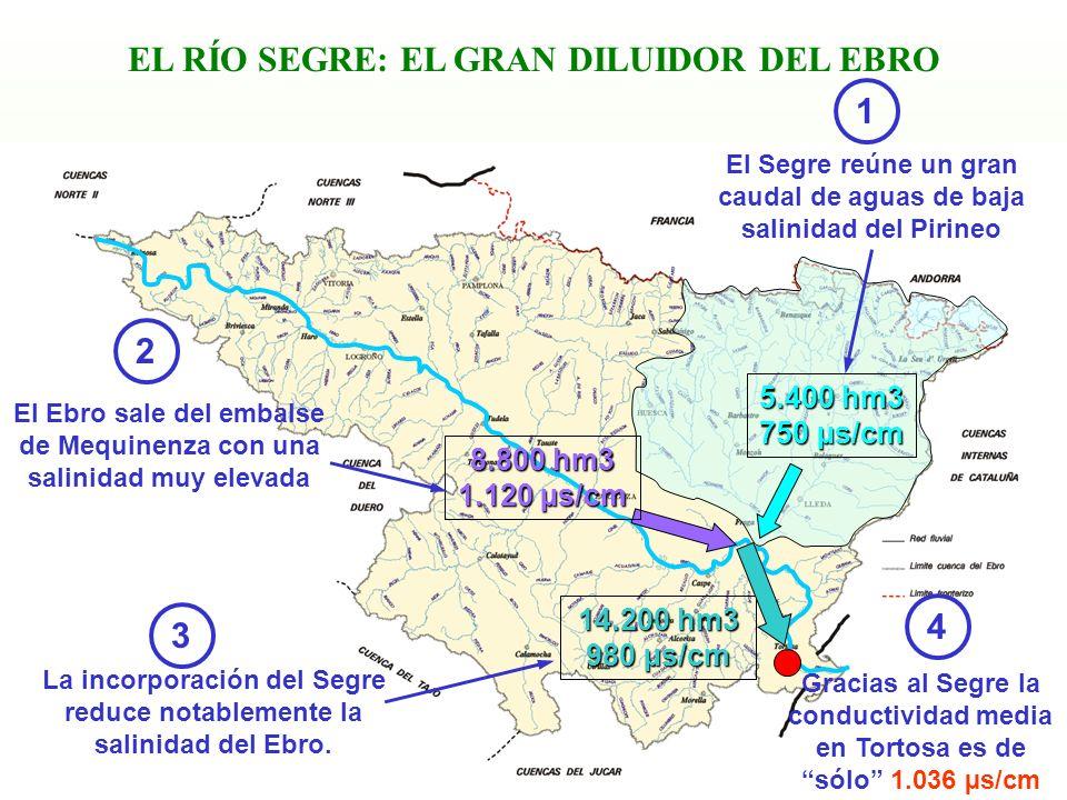 EL RÍO SEGRE: EL GRAN DILUIDOR DEL EBRO