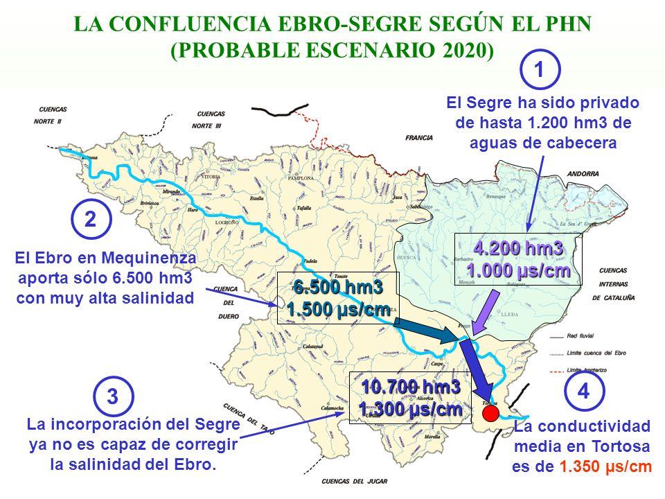 LA CONFLUENCIA EBRO-SEGRE SEGÚN EL PHN (PROBABLE ESCENARIO 2020)