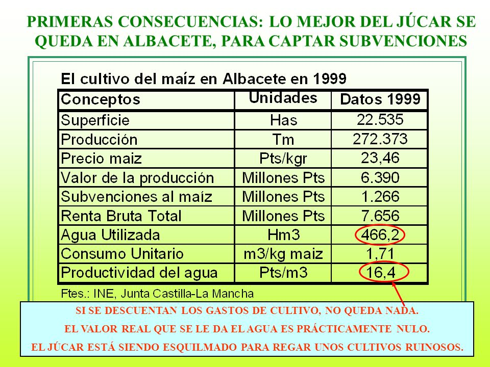 PRIMERAS CONSECUENCIAS: LO MEJOR DEL JÚCAR SE QUEDA EN ALBACETE, PARA CAPTAR SUBVENCIONES